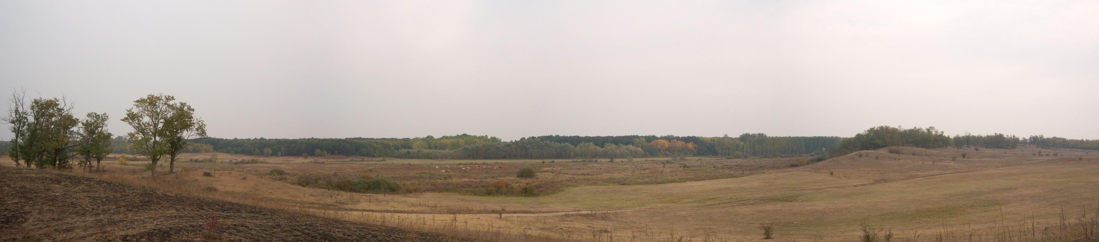 2009 ősz